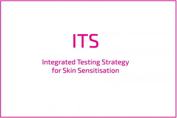 Integrated Testing Strategy